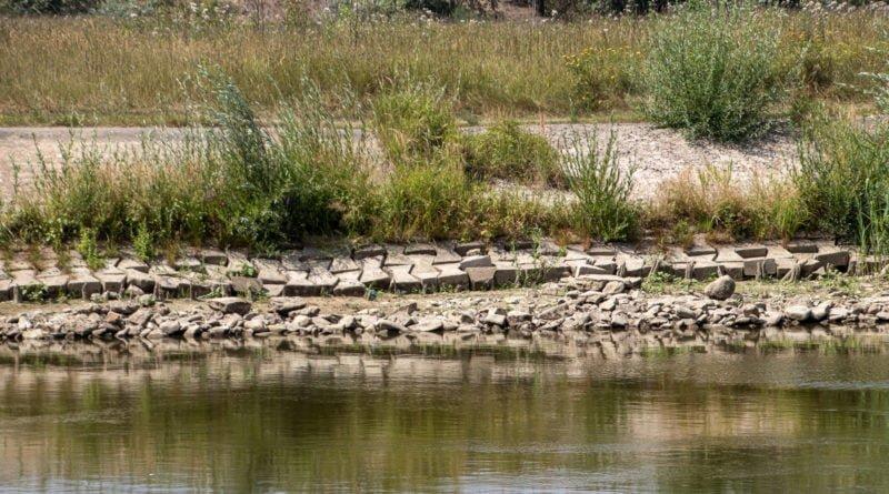 z biegiem warty i cybiny s. wachala 23 800x445 - Susza. Zobacz jak wyglądają poznańskie rzeki!