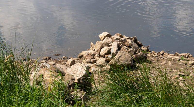 z biegiem warty i cybiny s. wachala 24 800x445 - Susza. Zobacz jak wyglądają poznańskie rzeki!
