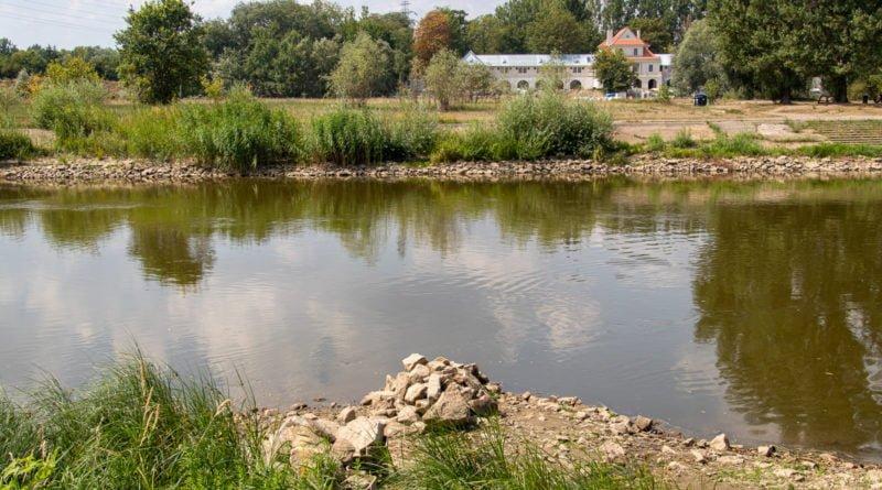z biegiem warty i cybiny s. wachala 25 800x445 - Susza. Zobacz jak wyglądają poznańskie rzeki!