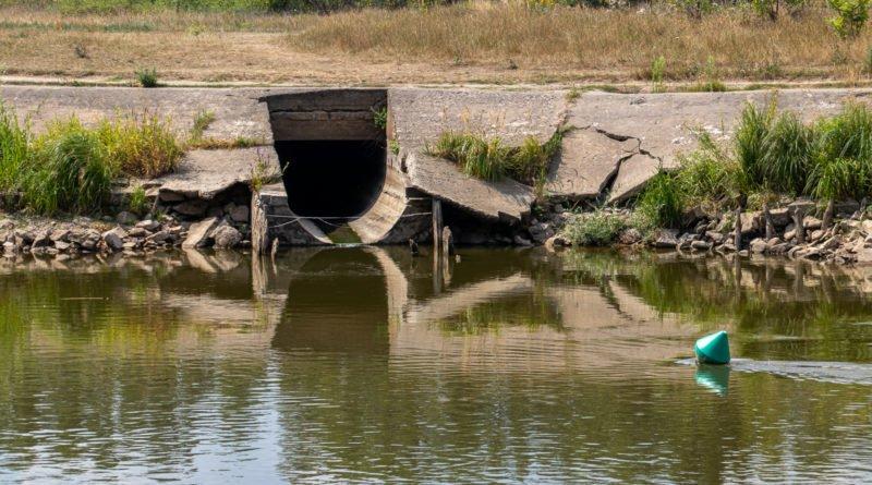 z biegiem warty i cybiny s. wachala 30 800x445 - Susza. Zobacz jak wyglądają poznańskie rzeki!