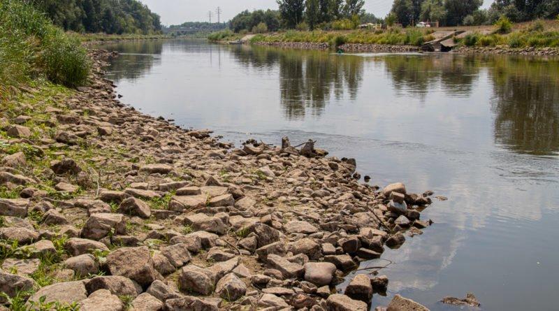 z biegiem warty i cybiny s. wachala 31 800x445 - Susza. Zobacz jak wyglądają poznańskie rzeki!