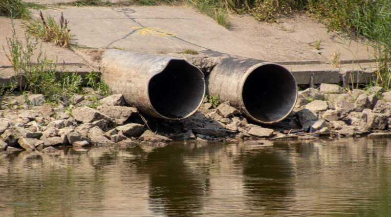 z biegiem warty i cybiny s. wachala 4 800x445 - Susza. Zobacz jak wyglądają poznańskie rzeki!
