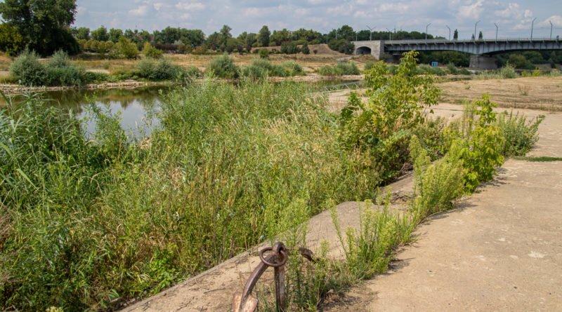 z biegiem warty i cybiny s. wachala 40 800x445 - Susza. Zobacz jak wyglądają poznańskie rzeki!