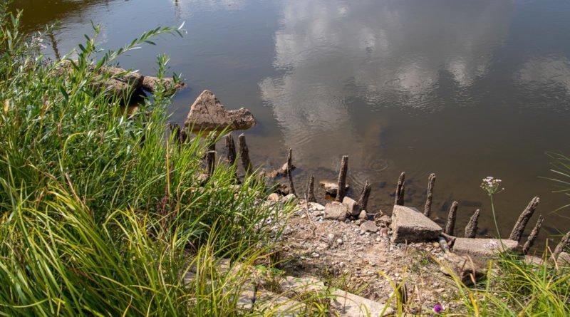 z biegiem warty i cybiny s. wachala 43 800x445 - Susza. Zobacz jak wyglądają poznańskie rzeki!