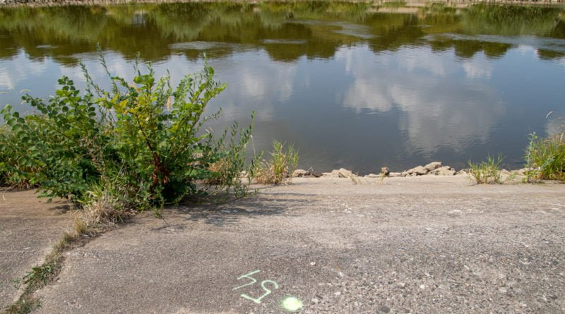 z biegiem warty i cybiny s. wachala 45 800x445 - Susza. Zobacz jak wyglądają poznańskie rzeki!