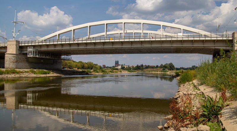 z biegiem warty i cybiny s. wachala 48 800x445 - Susza. Zobacz jak wyglądają poznańskie rzeki!