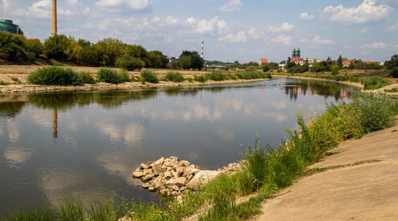 z biegiem warty i cybiny s. wachala 60 800x445 - Susza. Zobacz jak wyglądają poznańskie rzeki!