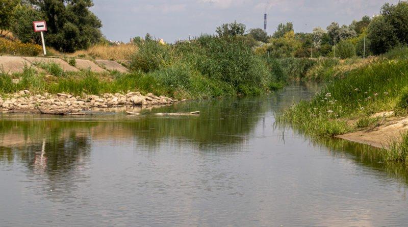 z biegiem warty i cybiny s. wachala 63 800x445 - Susza. Zobacz jak wyglądają poznańskie rzeki!