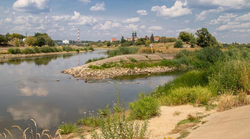 z biegiem warty i cybiny s. wachala 64 800x445 - Susza. Zobacz jak wyglądają poznańskie rzeki!