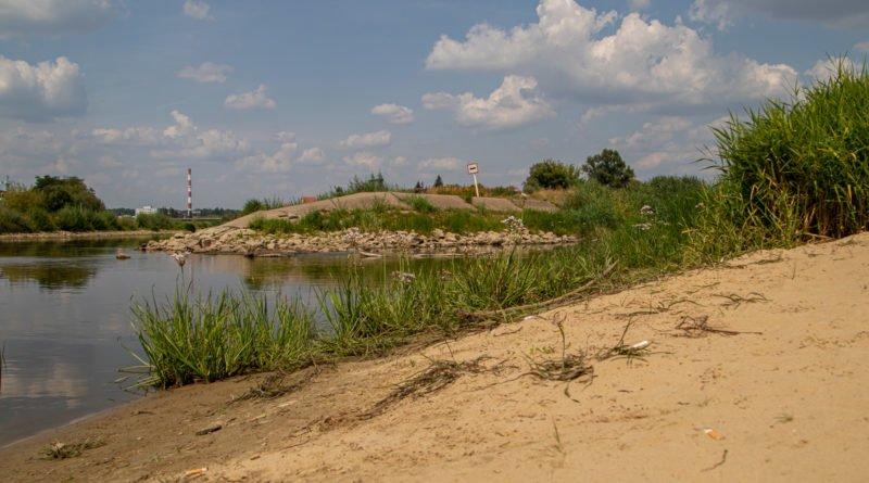 z biegiem warty i cybiny s. wachala 66 800x445 - Susza. Zobacz jak wyglądają poznańskie rzeki!