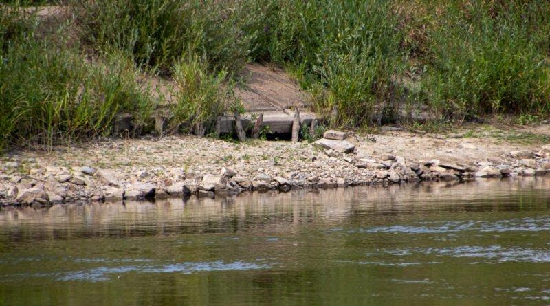 z biegiem warty i cybiny s. wachala 7 800x445 - Susza. Zobacz jak wyglądają poznańskie rzeki!