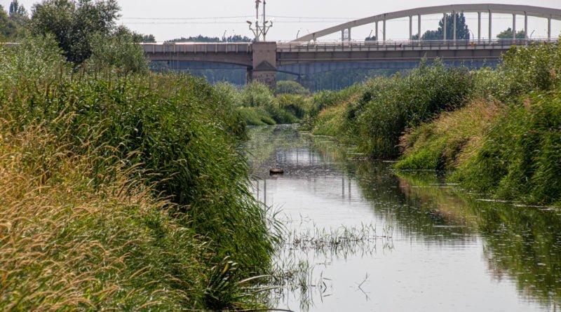 z biegiem warty i cybiny s. wachala 71 800x445 - Susza. Zobacz jak wyglądają poznańskie rzeki!