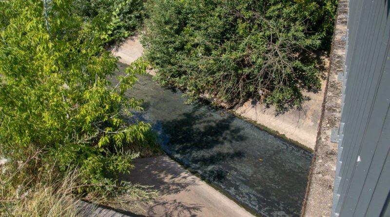 z biegiem warty i cybiny s. wachala 76 800x445 - Susza. Zobacz jak wyglądają poznańskie rzeki!
