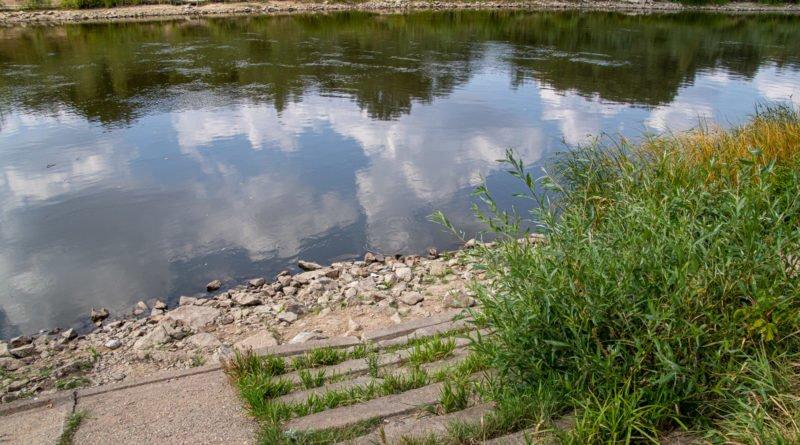 z biegiem warty i cybiny s. wachala 8 800x445 - Susza. Zobacz jak wyglądają poznańskie rzeki!