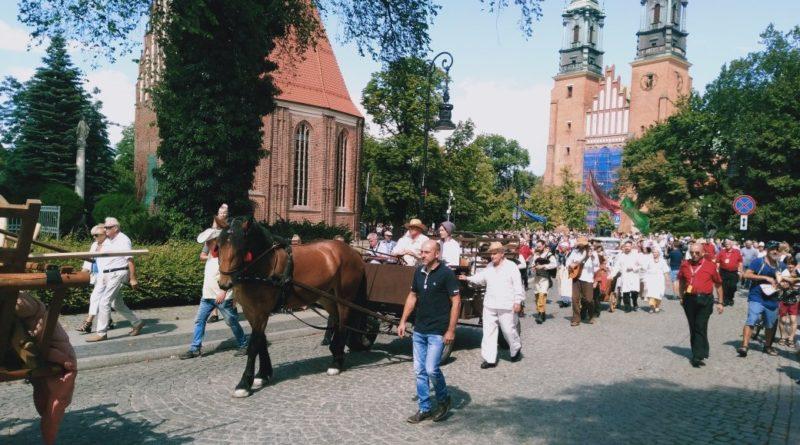 bambrzy 3 800x445 - Poznań: Jak Bambrzy do Poznania 300 lat temu przybywali