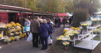 """cmentarz 390x205 - Poznań: Sprzedawcy zniczy zostają. """"Zależy nam na tym, by utrzymać handel w tym miejscu"""""""