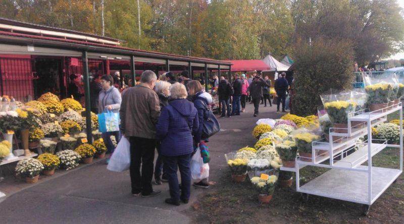 """cmentarz 800x445 - Poznań: Sprzedawcy zniczy zostają. """"Zależy nam na tym, by utrzymać handel w tym miejscu"""""""