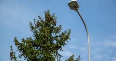 latarnia uliczna fot. ZDM