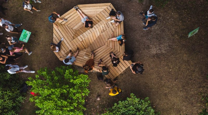 mood for wood 4 800x445 - Poznań: Mood for Wood, czyli niezwykła ławka w Ogrodzie Dendrologicznym