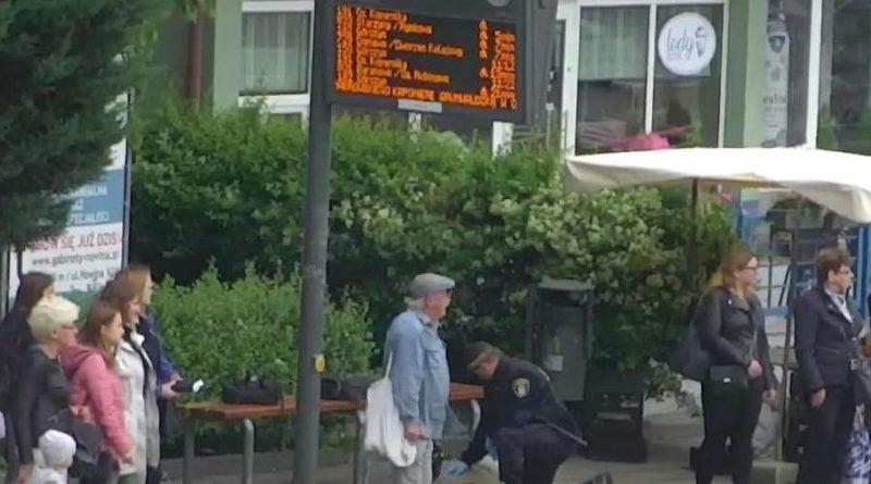 straz miejska interwencja fot. smmp 800x445 - Poznań: Straż miejska podsumowała półrocze