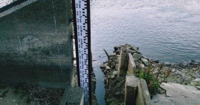 warta 2 390x205 - Poznań: Deszcz pada, a w rzekach nadal mało wody
