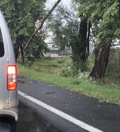 wichura 1 405x445 - Kobylnica: Uwaga na wichurę i połamane drzewa!