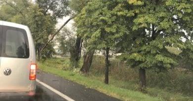 wichura 2 390x205 - Kobylnica: Uwaga na wichurę i połamane drzewa!