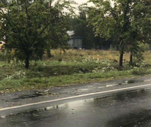 wichura 4 528x445 - Kobylnica: Uwaga na wichurę i połamane drzewa!