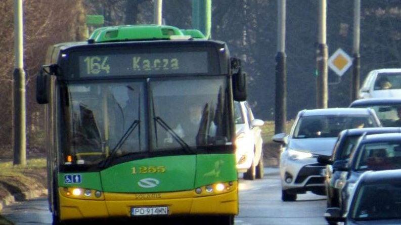 Autobus-linii-164 fot. ZTM