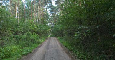 Zakaz wstępu do lasów – ale nie myśliwym