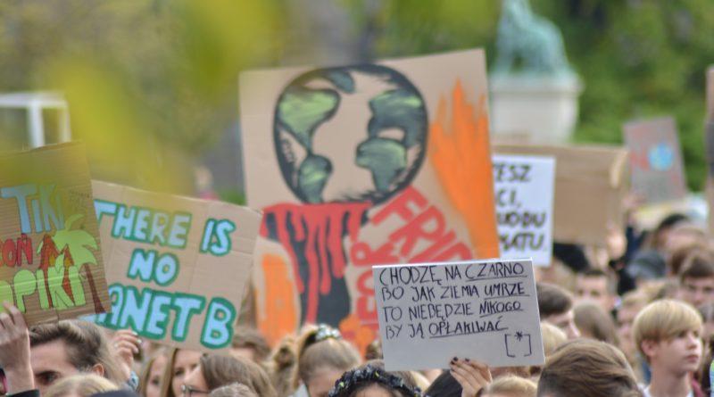 """mlodziezowy strajk klimatyczny fot. karolina adamska 23 800x445 - Poznań: Młodzieżowy Strajk Klimatyczny. """"Walczę o prawo do życia dla wszystkich!"""""""