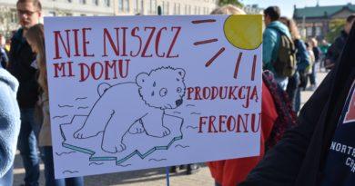 Młodzieżowy Strajk Klimatyczny fot. Karolina Adamska (27)