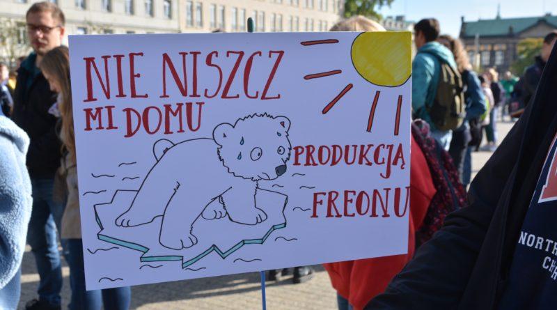"""mlodziezowy strajk klimatyczny fot. karolina adamska 5 800x445 - Poznań: Młodzieżowy Strajk Klimatyczny. """"Walczę o prawo do życia dla wszystkich!"""""""
