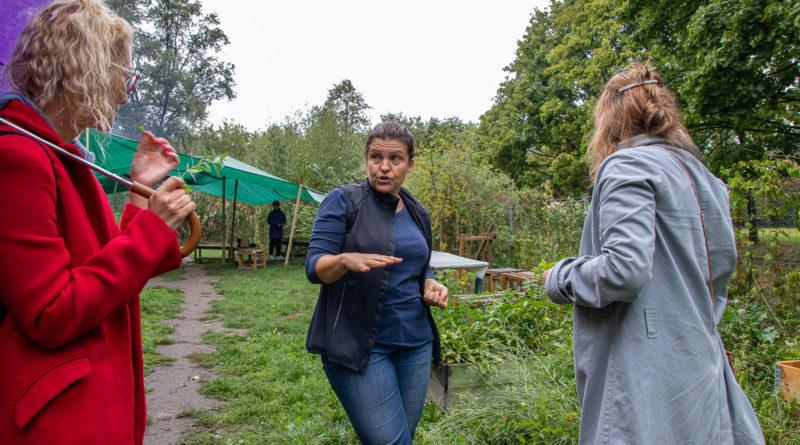 ogrod kolektyw kapielisko fot. slawek wachala 6 800x445 - Piknik w ogrodzie Kolektyw Kąpielisko - nowe otwarcie