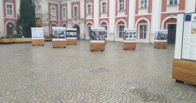 urzad miasta w poznaniu 2 390x205 - Poznań: Seniorzy i niepełnosprawni mogą pojechać na wybory taksówką