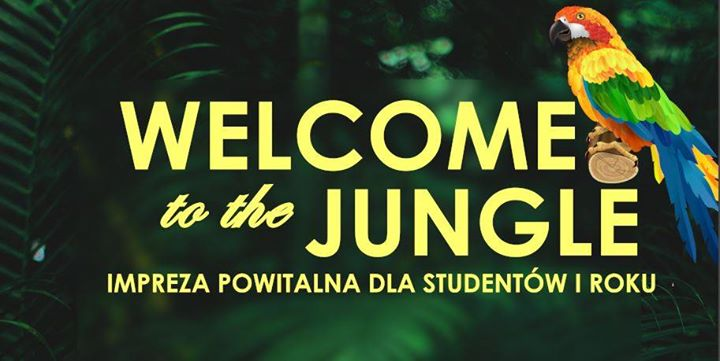 56106 image 70694786 2524929511126667 1206321971164348416 n - Welcome to the jungle !