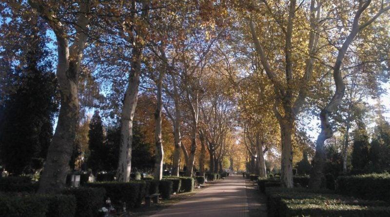 Cmentarz Wiśniowa 1