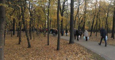 milostowo cmentarz 390x205 - Poznań: Idziesz na cmentarz? Uważaj na... dziki!