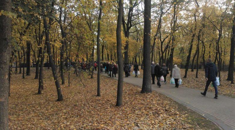 milostowo cmentarz 800x445 - Poznań: Idziesz na cmentarz? Uważaj na... dziki!