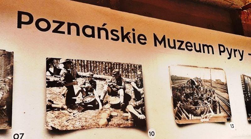 muzeum pyry fot. plot 800x445 - Poznań: Mamy Muzeum Pyry