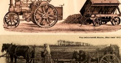 pyra 2 390x205 - Szreniawa zaprasza na Smak Pyry!