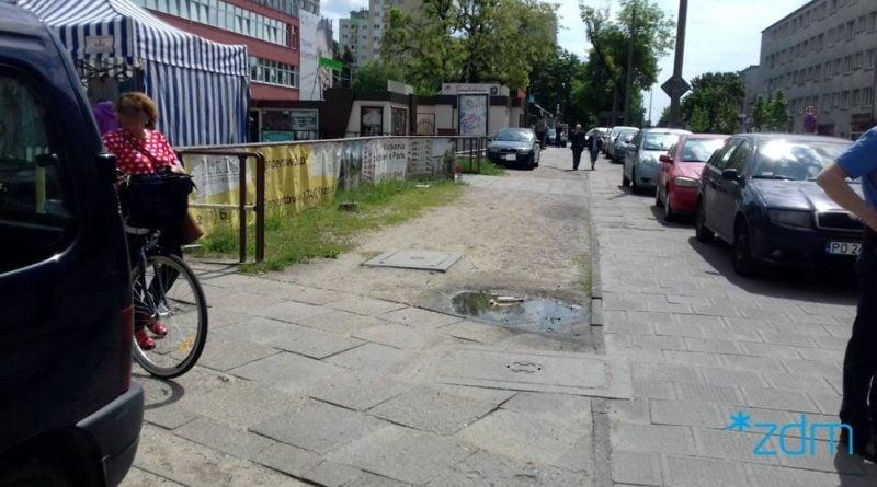 sciegiennego 3 fot. zdm 800x445 - Poznań: Na Ściegiennego będą kwitły hiacynty