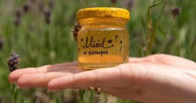Nagroda za działania dla pszczół 4 fot. UMP