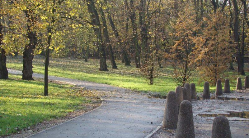 park Lasek Dębiecki fot. ZZM