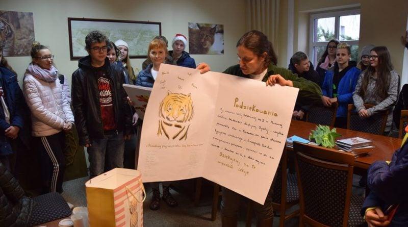 sp murowana goslina i tygrysy 4 fot. zoo poznan 800x445 - Poznań: Gogh ma się troszkę lepiej, ale podróż pozostałych tygrysów do Hiszpanii nadal w zawieszeniu