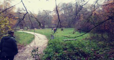 Sprzątanie doliny Cybiny2 fot.SMDC