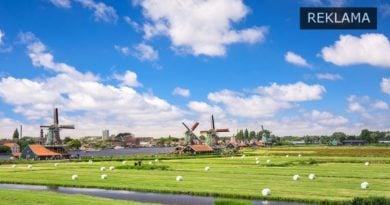 przelewy z holandii fot. artykuł sponsorowany