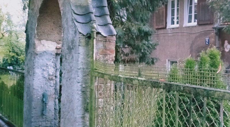 szczecin 8 800x445 - Szczecin: miasto do długiego odkrywania