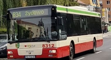 autobus-linii-numer-834 fot. ZTM