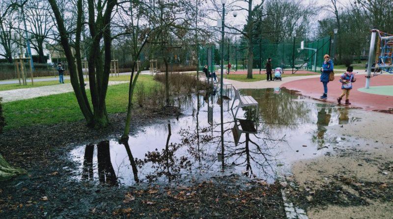 park Wodziczki kałuża 1